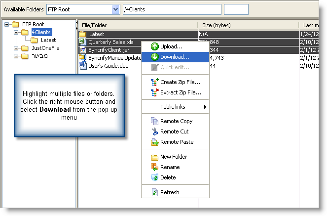 Enhanced Browser in SynaMan