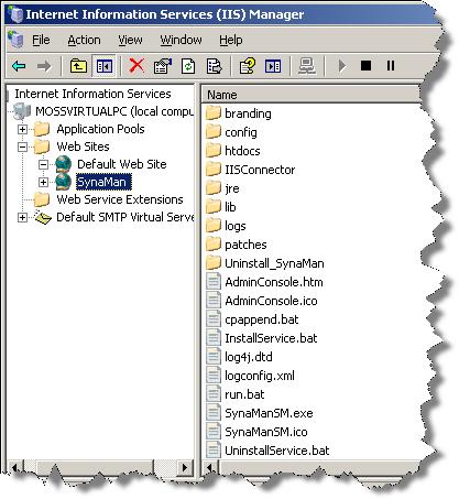 Using SynaMan with Microsoft IIS server